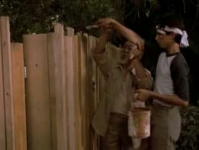 Mr Miyagi says: Paint the fence