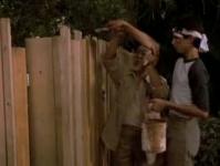 Mr Miyagi says: Paint the fence